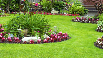 Beautifully landscaped & maintained grounds